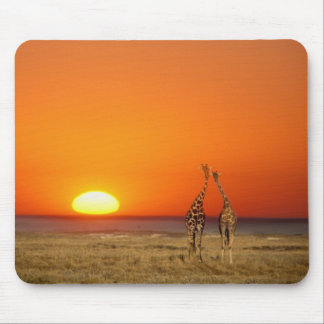 A Giraffe couple walks into the sunset, in Mouse Mat