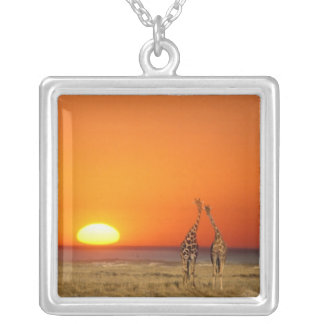 A Giraffe couple walks into the sunset, in Silver Plated Necklace