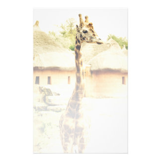 A Giraffe In An African Village Animal Photograph Stationery