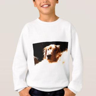 A Golden Retreiver In the Sun Sweatshirt