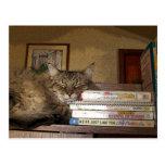 A Good Book Postcard