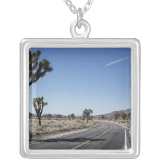 a good shaped street in the middle of the silver plated necklace