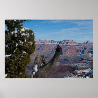 A Grand Canyon Throne 2938 Print