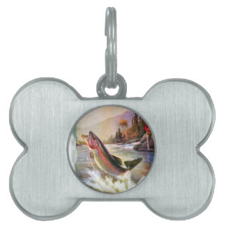 A great catch pet ID tag