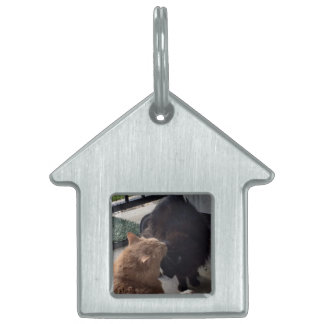 A great gift - a House Tag/Key chain for your cats Pet ID Tags