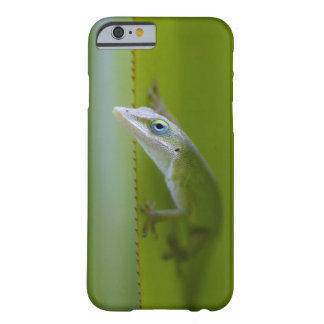 A green anole is an arboreal lizard barely there iPhone 6 case