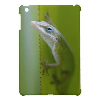 A green anole is an arboreal lizard iPad mini case