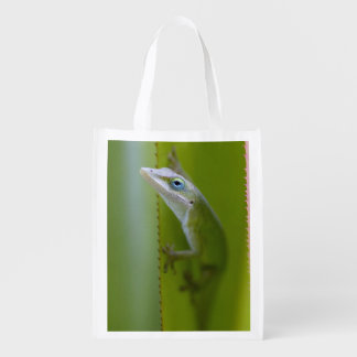 A green anole is an arboreal lizard reusable grocery bag