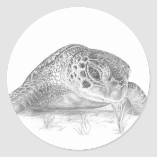 A Green Sea Turtle in Grayscale Classic Round Sticker