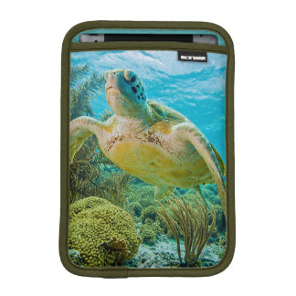 A Green Turtle On The Shallow Reefs Of Bonaire iPad Mini Sleeve