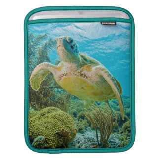 A Green Turtle On The Shallow Reefs Of Bonaire iPad Sleeve