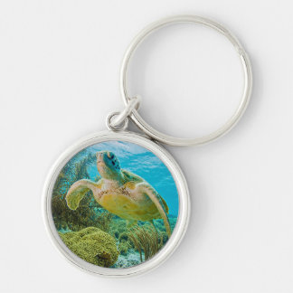 A Green Turtle On The Shallow Reefs Of Bonaire Key Ring