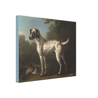 A Grey Spotted Hound by John Wootton Canvas Print