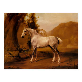 A Grey Stallion In A Landscape by George Stubbs Postcards
