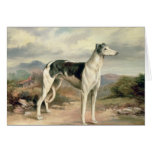 A Greyhound in a hilly landscape Card