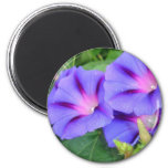 A Group of Beautiful Morning Glories 6 Cm Round Magnet