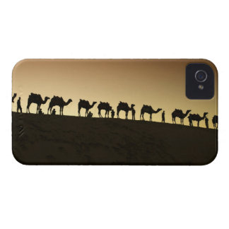 A group of camel herders with their camels at blackberry bold cases