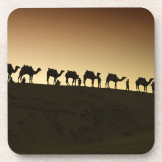 A group of camel herders with their camels at drink coasters