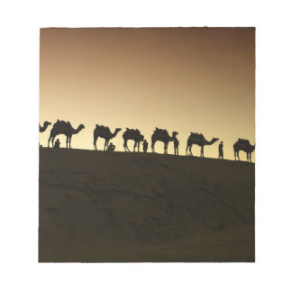 A group of camel herders with their camels at notepad