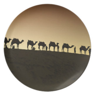 A group of camel herders with their camels at plate