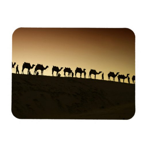 A group of camel herders with their camels at rectangular magnet