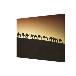 A group of camel herders with their camels at stretched canvas print