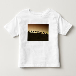 A group of camel herders with their camels at toddler T-Shirt