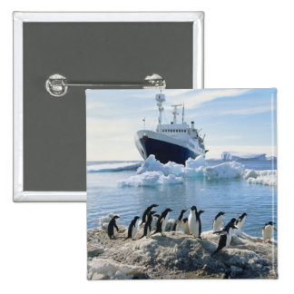 A Group Of Penguins Standing On An Icy Beach 15 Cm Square Badge