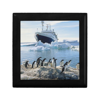 A Group Of Penguins Standing On An Icy Beach Gift Box