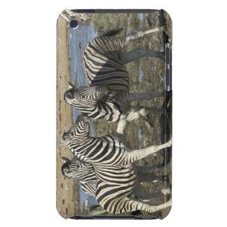 A group of Plains Zebra (Equus qagga) greet each iPod Touch Case