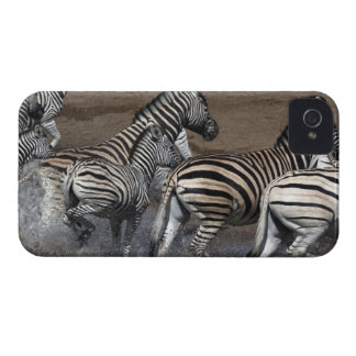 A group of Planes Zebra (Equus quagga) at a iPhone 4 Covers