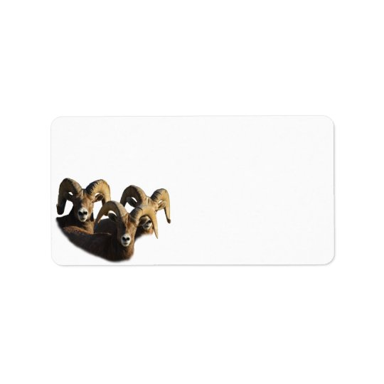 A Group of Rams Label