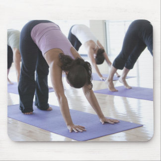 a group of women practicing yoga in a bright mouse mat
