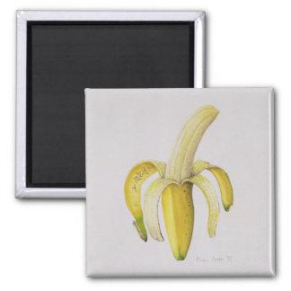 A Half-peeled Banana 1997 Magnet