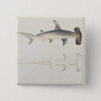 A Hammer-headed Shark, Loheia, formerly attributed 15 Cm Square Badge