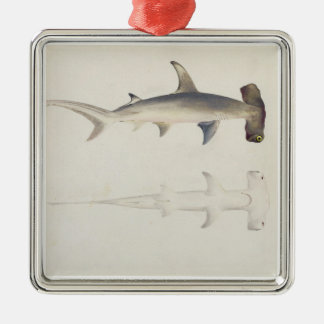 A Hammer-headed Shark, Loheia, formerly attributed Christmas Ornament
