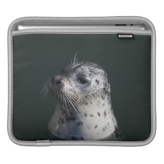 A harbor seal iPad sleeves