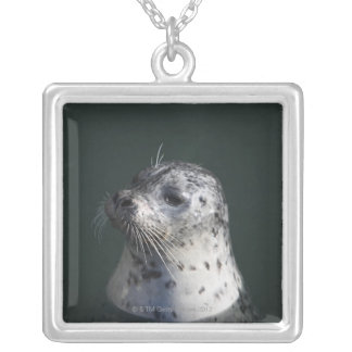 A harbor seal silver plated necklace