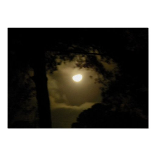 A Hazy Full Moon Framed by Trees Posters