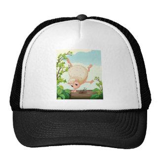 A hedgehog dancing on a dry trunk cap