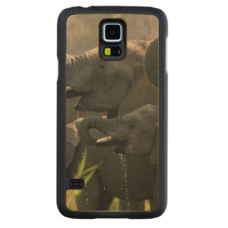 A Herd Of African Elephants (Loxodonta Africana) Carved Maple Galaxy S5 Case