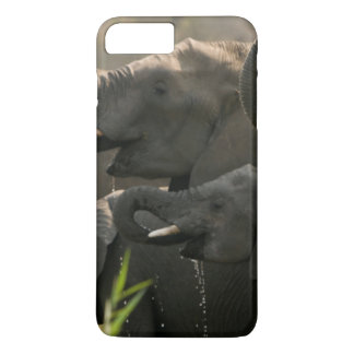 A Herd Of African Elephants (Loxodonta Africana) iPhone 8 Plus/7 Plus Case