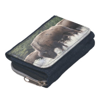A Herd of Brown Bison Graze in a grassy Meadow Wallets