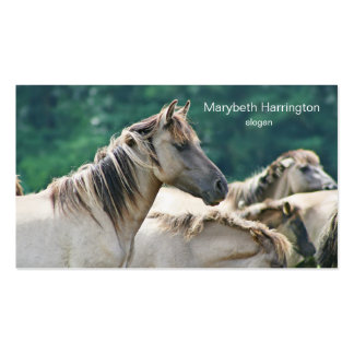 A herd of Brumby Horses from Australia Pack Of Standard Business Cards