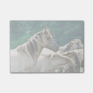 A herd of Brumby Horses from Australia Post-it® Notes