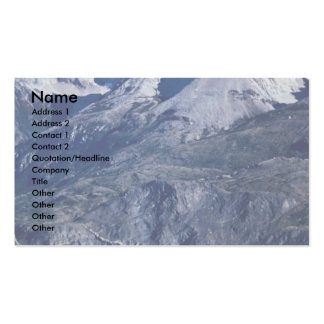 A herd of guanacos, Torres del Paine National Park Business Card Template