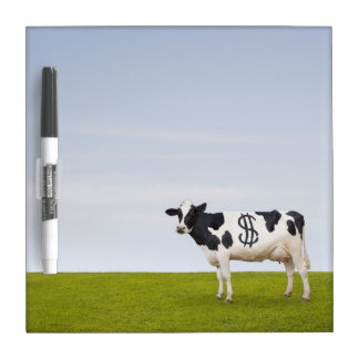A Holstein Dairy cow with spots in the shape of Dry Erase Board