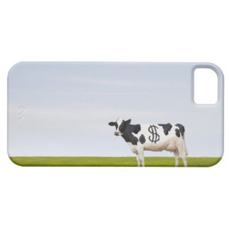 A Holstein Dairy cow with spots in the shape of iPhone 5 Cover