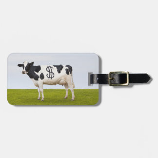 A Holstein Dairy cow with spots in the shape of Luggage Tag