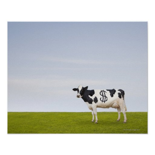 A Holstein Dairy cow with spots in the shape of Poster